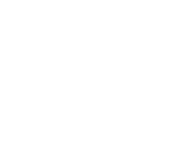 One Million Step Challenge supported by Fitbit logo