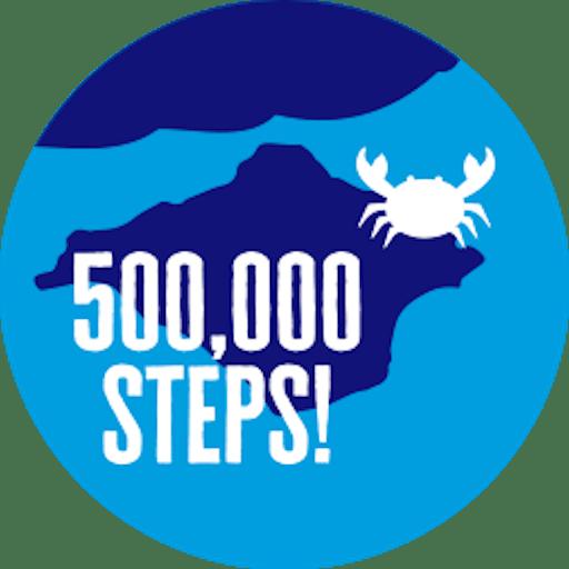 500,000 steps