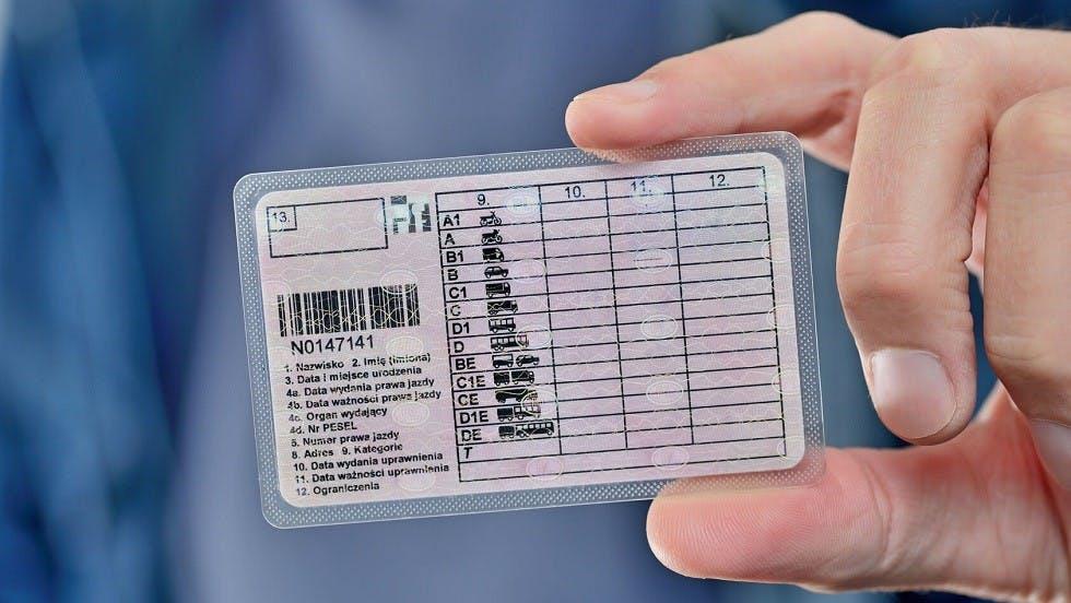 Differentes categories de vehicules sur un permis polonais