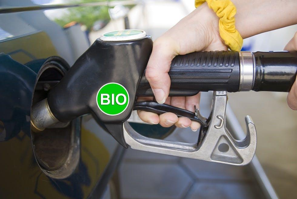 Pompe a essence comportant un sticker bio