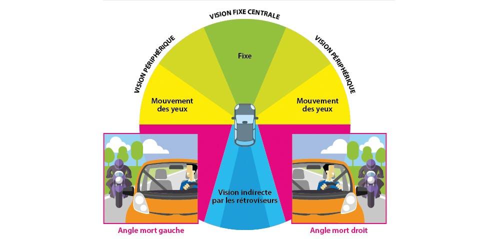 Composition du champ visuel des conducteurs