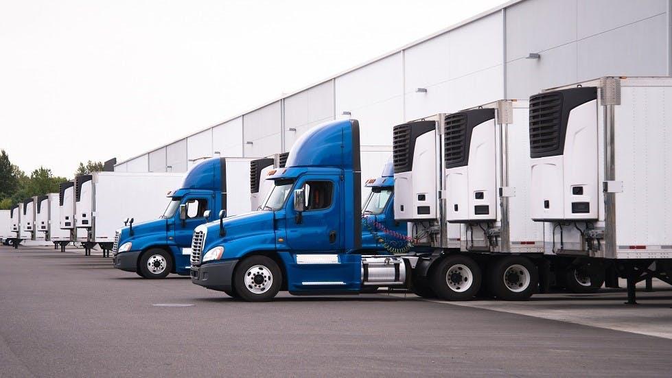 Flotte de camions frigorifiques larges