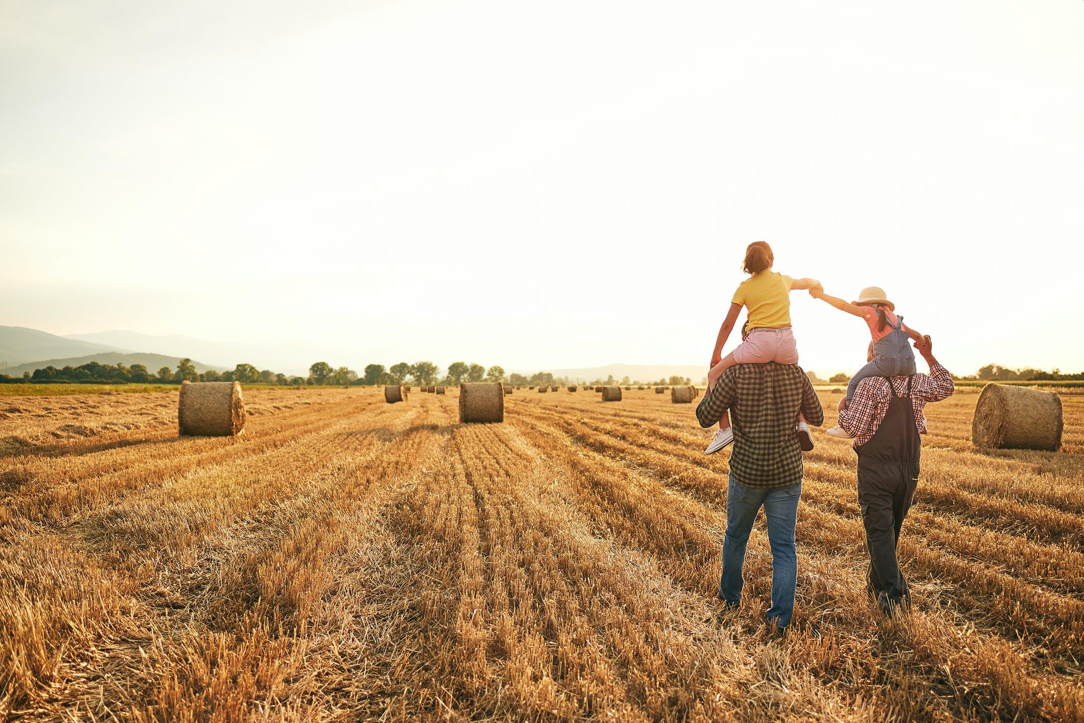 Agroturystyka nadal w modzie