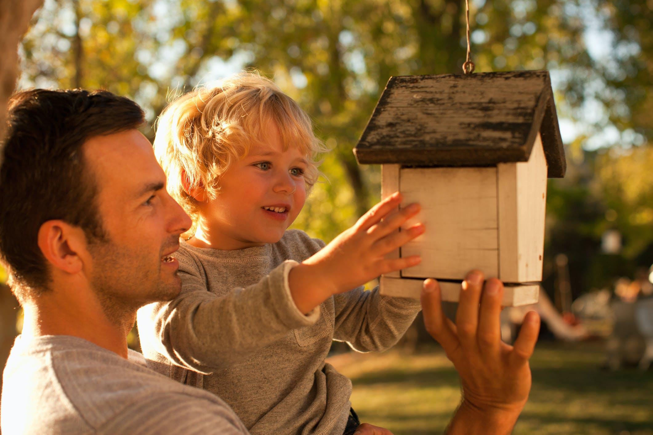 Jak urządzić ptasią stołówkę? Poradnik z okazji Światowego Dnia Ptaków