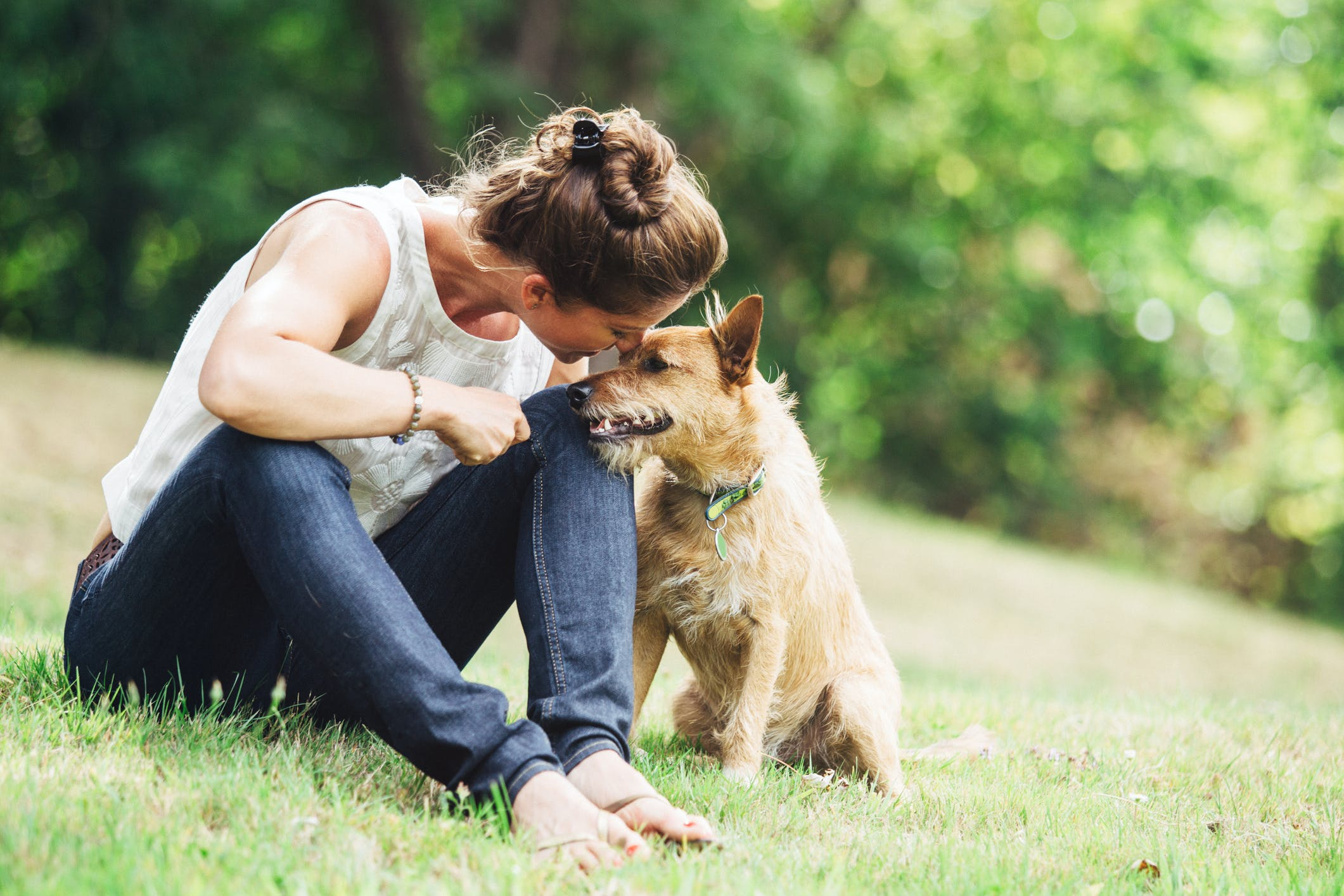 Dojlidy Górne – Twój psiak pokocha tę dzielnicę!