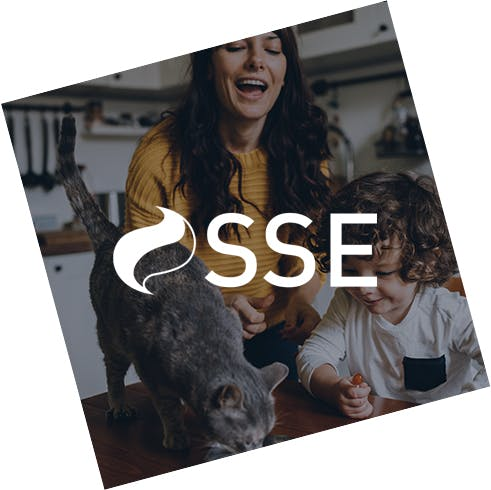 SSE Energy Services