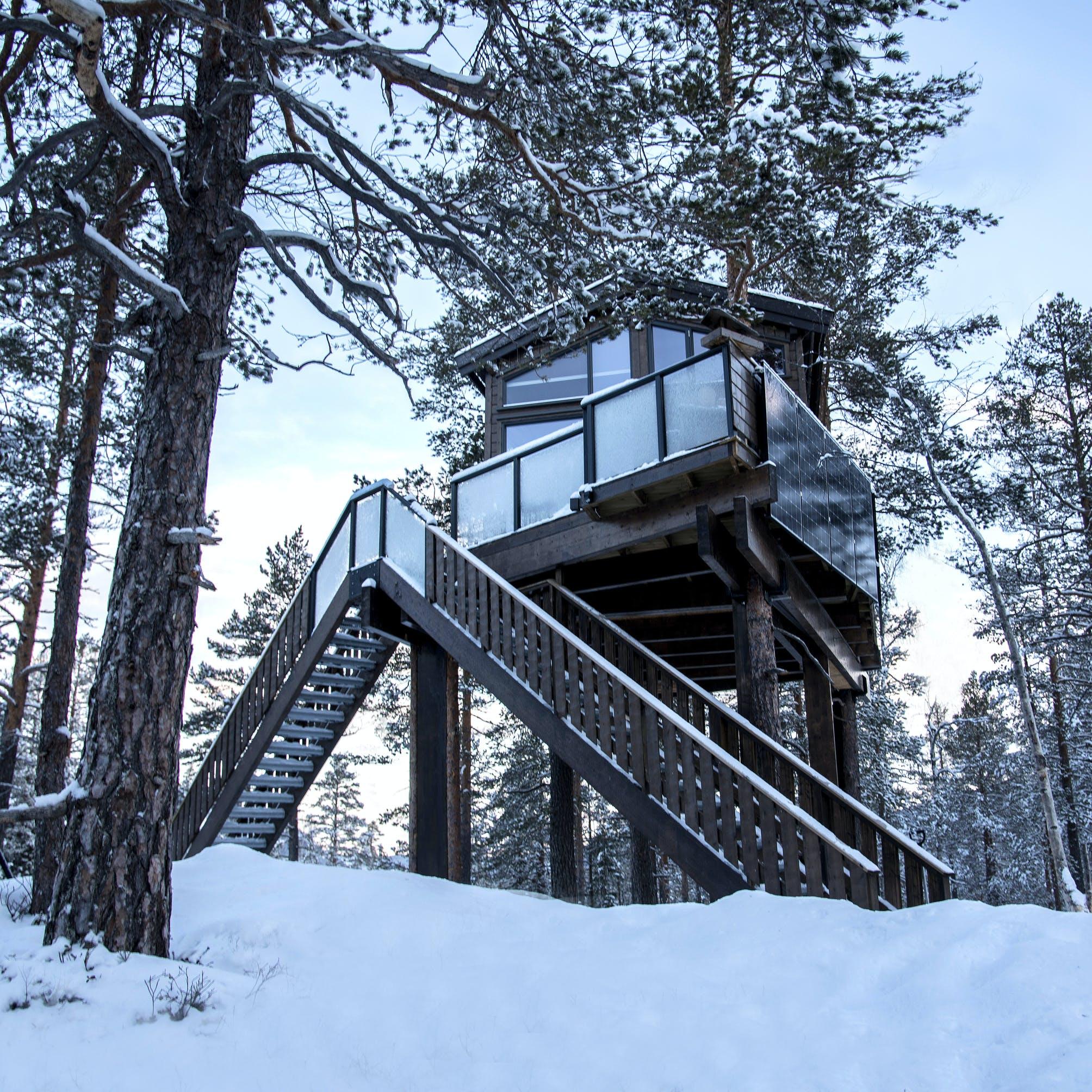 tretopphytte i snøen