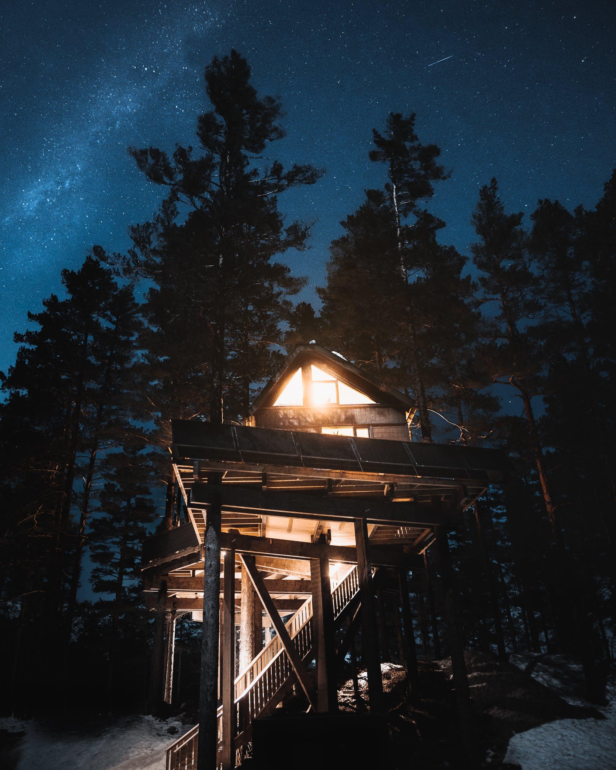 tretopphytte stjernehimmel