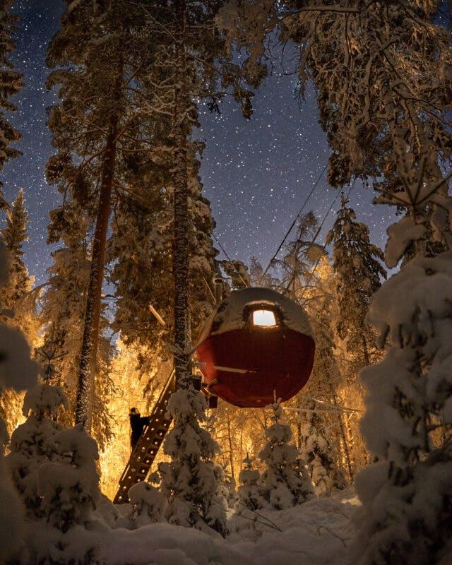 En svävande stuga mitt i skogen omringad av snö och träd
