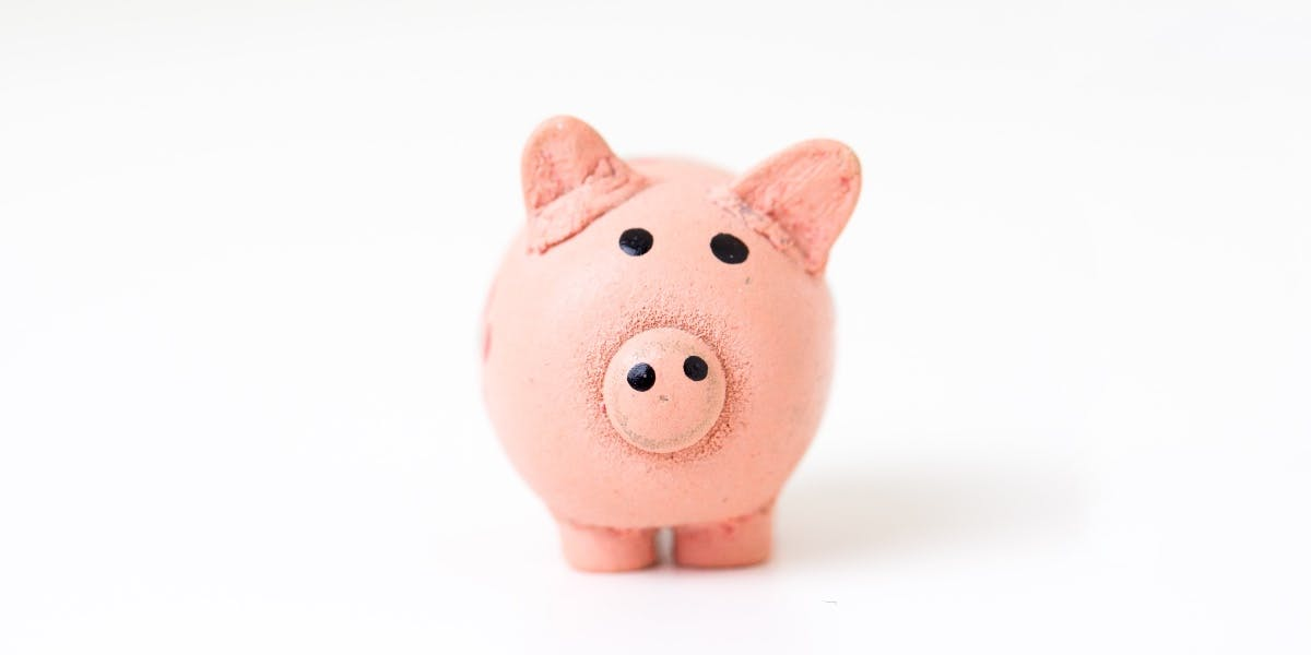A pink piggy bank for holding solar tax credit savings.