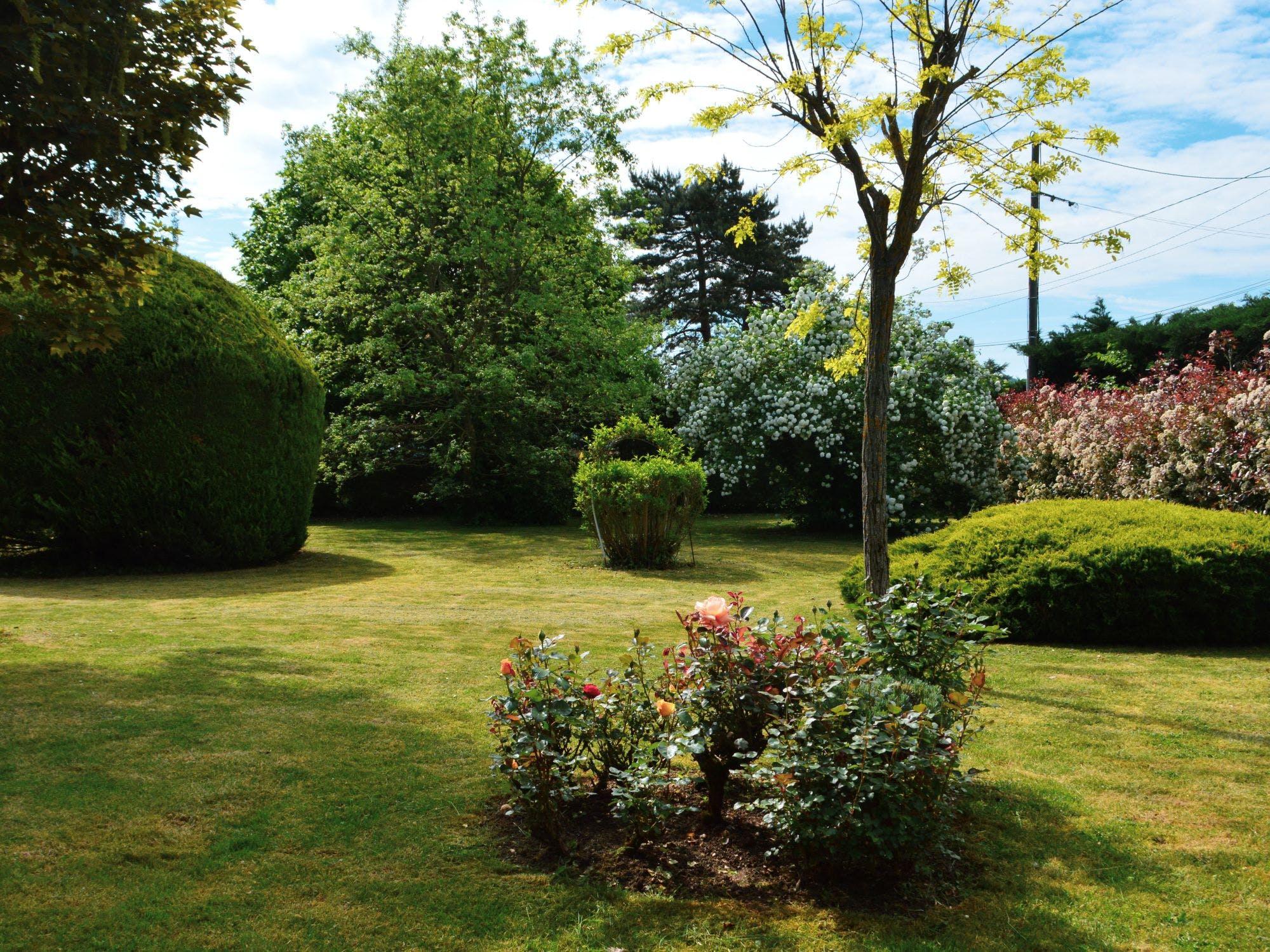 Jardin arboré de la maison d'hôtes Au Paradis Vert
