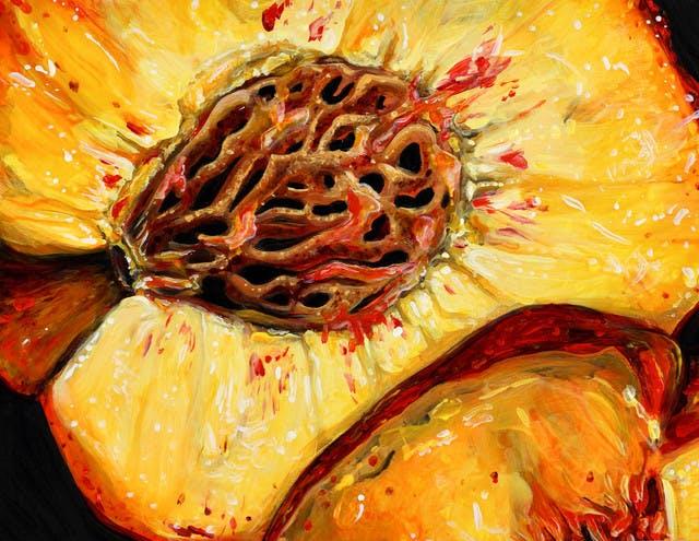angela faustina's peach print for postcard