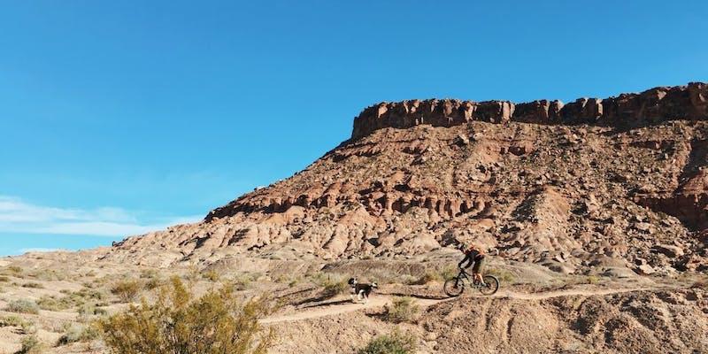 Mountain biking in the west. Source: Greg Rakozy; Unsplash.