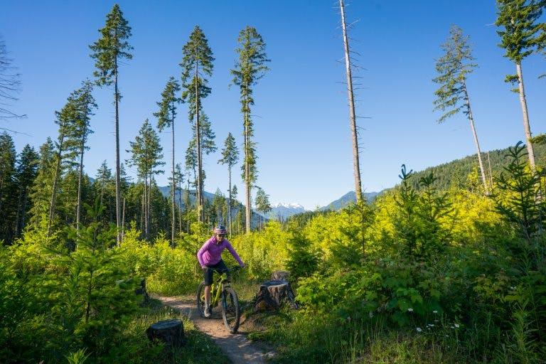 Biking Washington's Olympic Adventure Route.