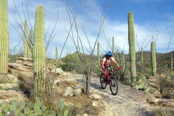 Mountains near Tucson AZ