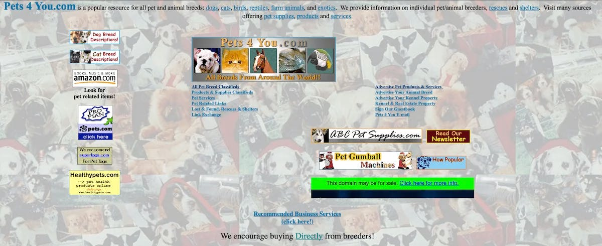 Pets4You.com in 2000