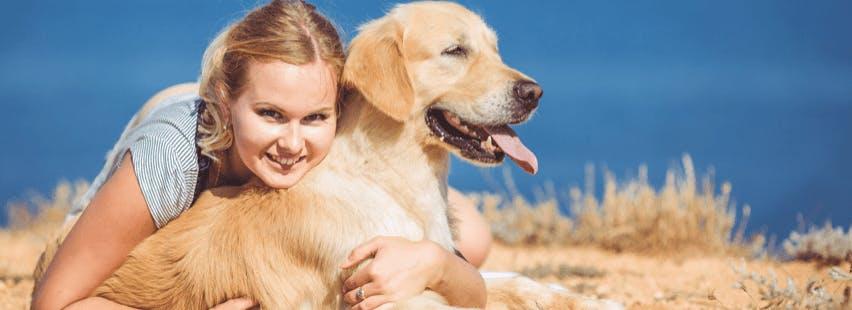 garde de chien avec un dog sitter