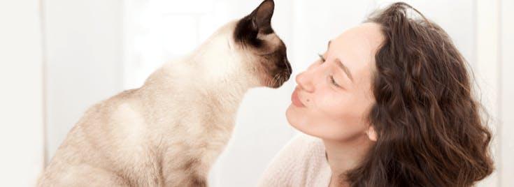 chat-avec-son-petsitter