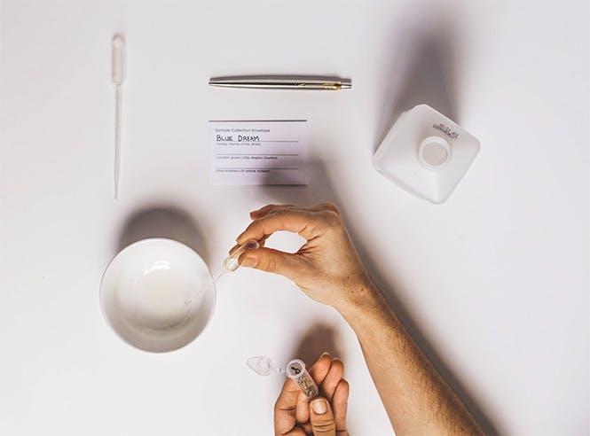 Genotype Testing