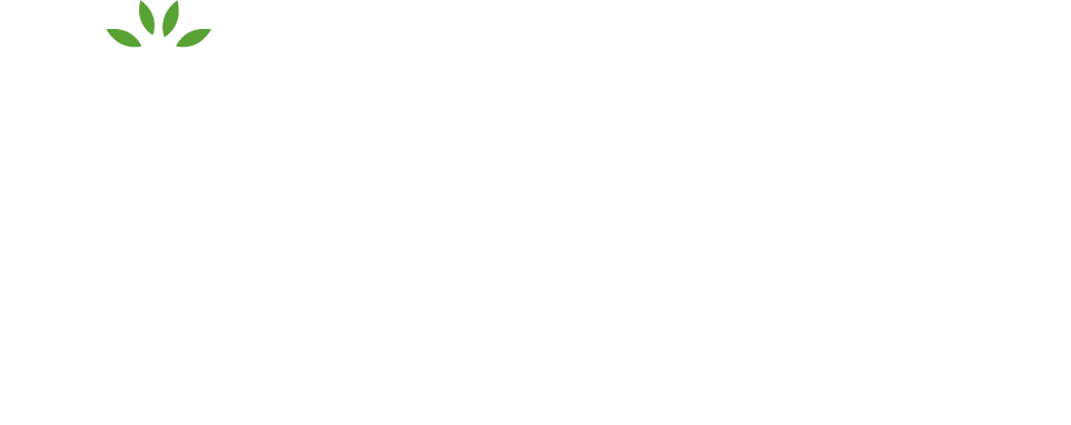 Pineapple Recruitment Footer Logo