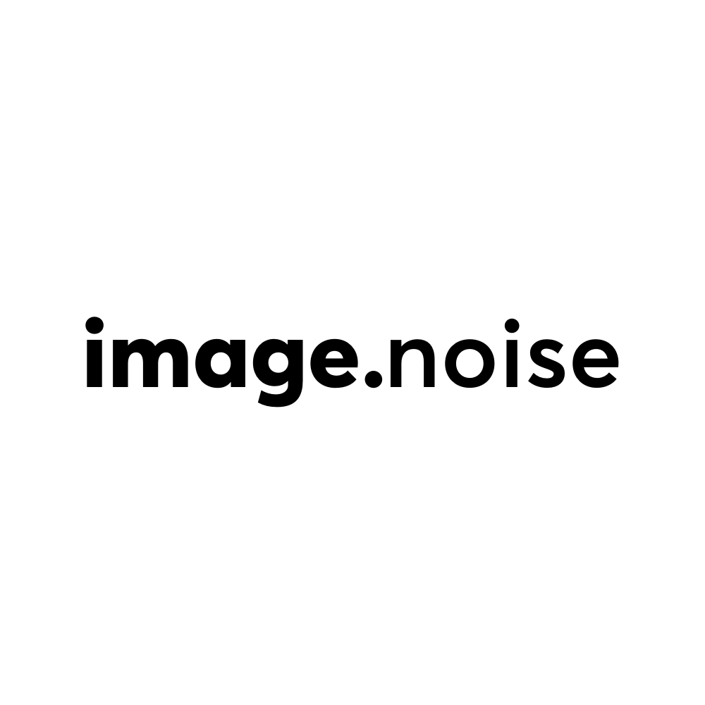 Text reading 'image noise'