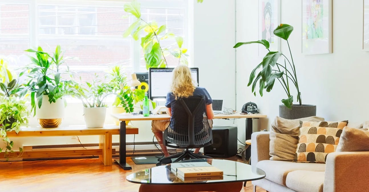 man in an office typing at desk with plants
