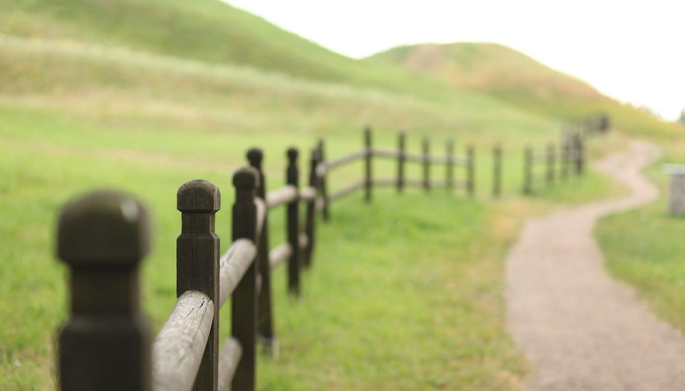 clôture dans la nature