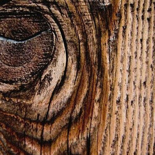 matériaux tendances : le bois