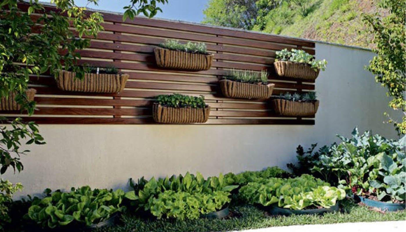 5 idées pour clôturer son jardin avec style et protéger sa maison