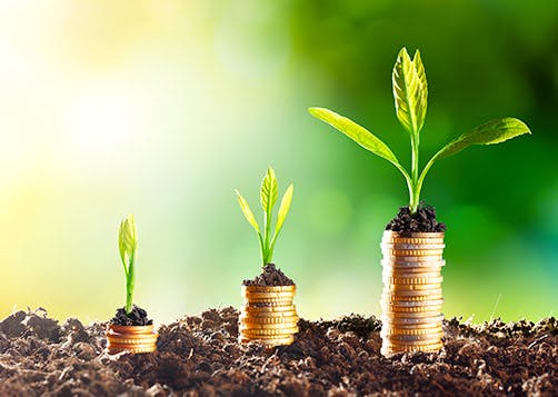 Épargne défiscalisée ou à taxation réduite : LCL Banque et Assurance