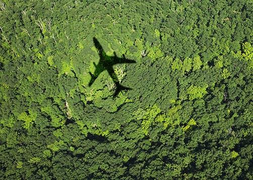 Coronavirus : agir sur le climat et protéger l'environnement, la clé de la relance économique  - LCL Banque Privée