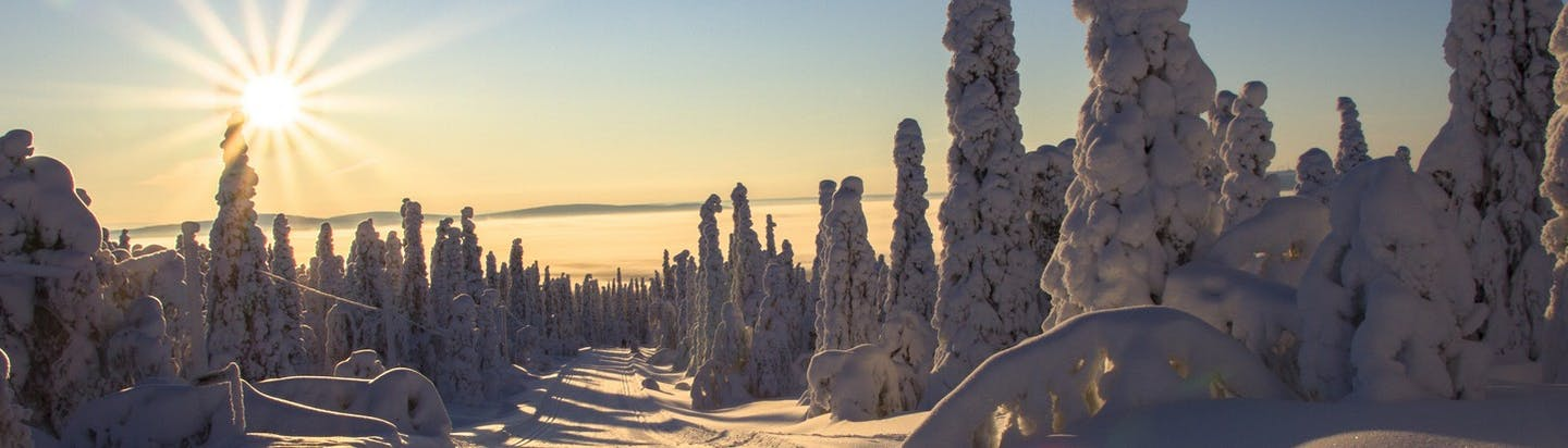 Lapland by private jet