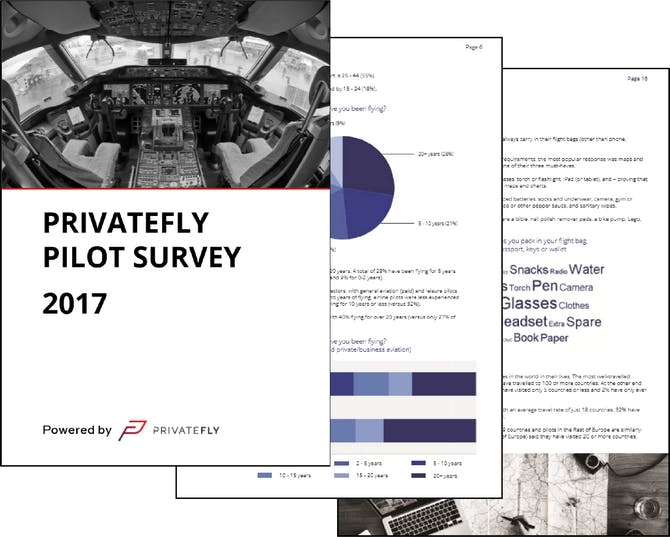 PrivateFly Pilot Survey 2017 full copy