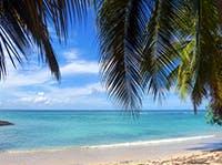 Private jet to Martinique