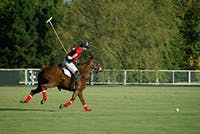 Polo Events By Private Jet And Helicopter