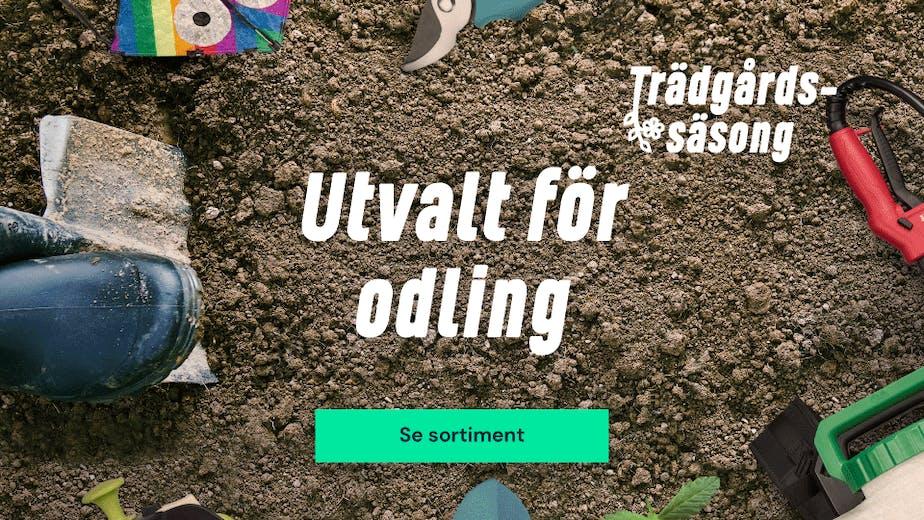 https://www.proffsmagasinet.se/tradgard-utvalt-for-odling