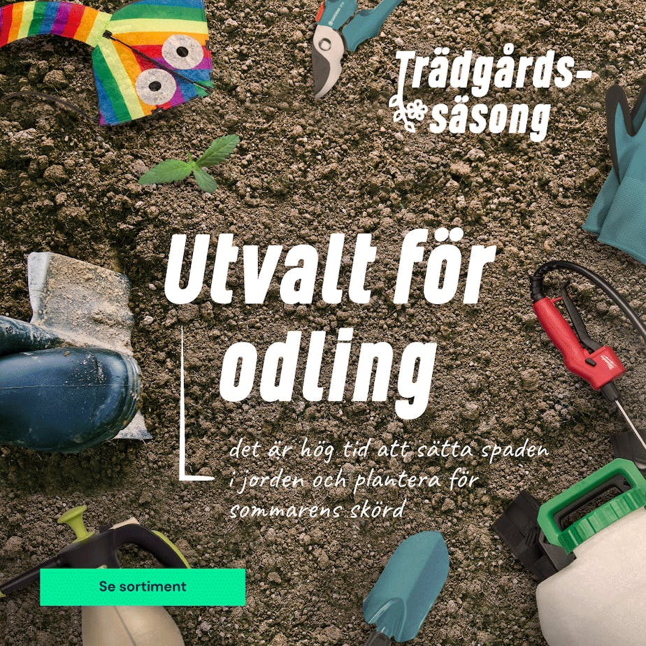 https://www.proffsmagasinet.se/tradgard-utvalt-for-odling