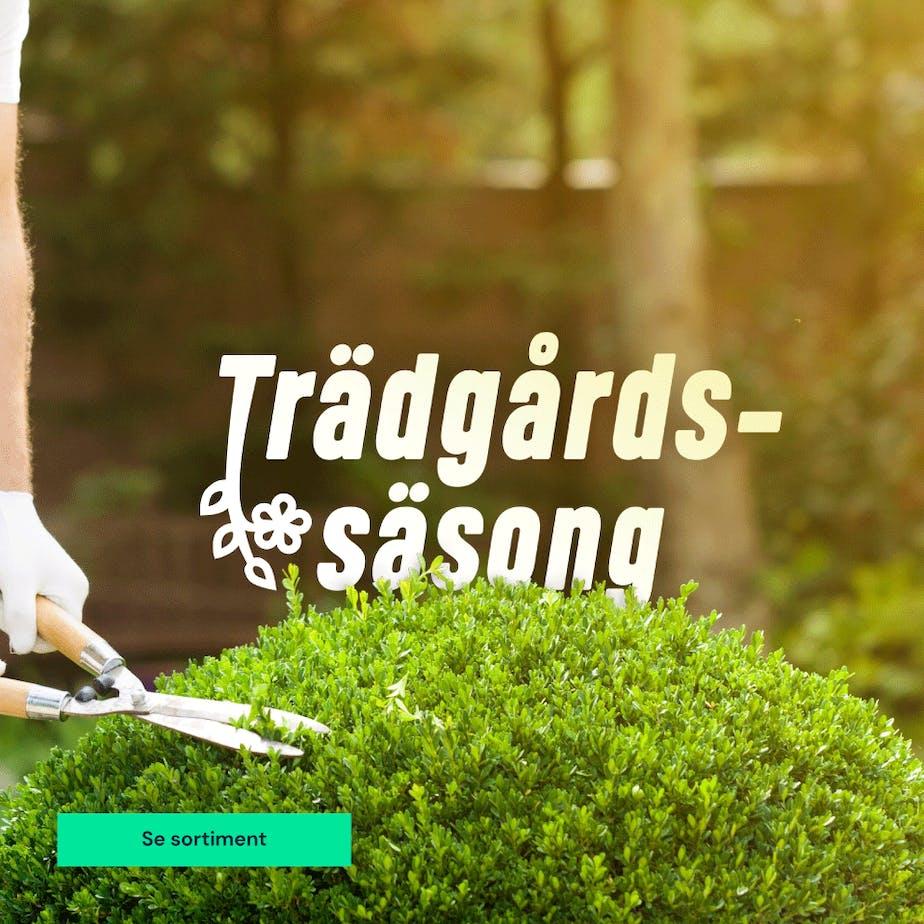 https://www.proffsmagasinet.se/tradgard-utvalt-for-tradgardssasong