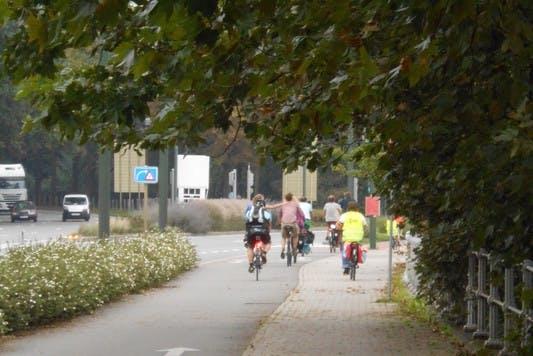 pro_velo_bike_bicycle_road_park_tour_riding
