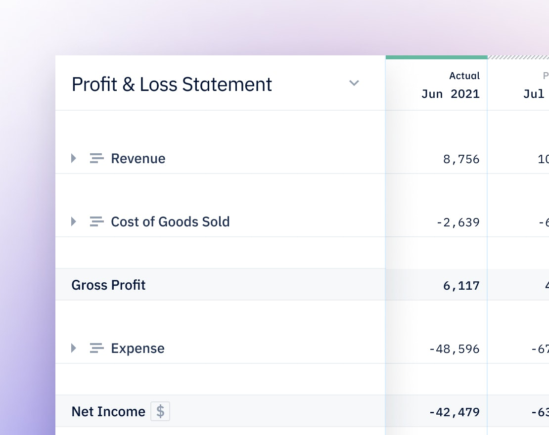 Pry bookkeeping showing profit & loss statement