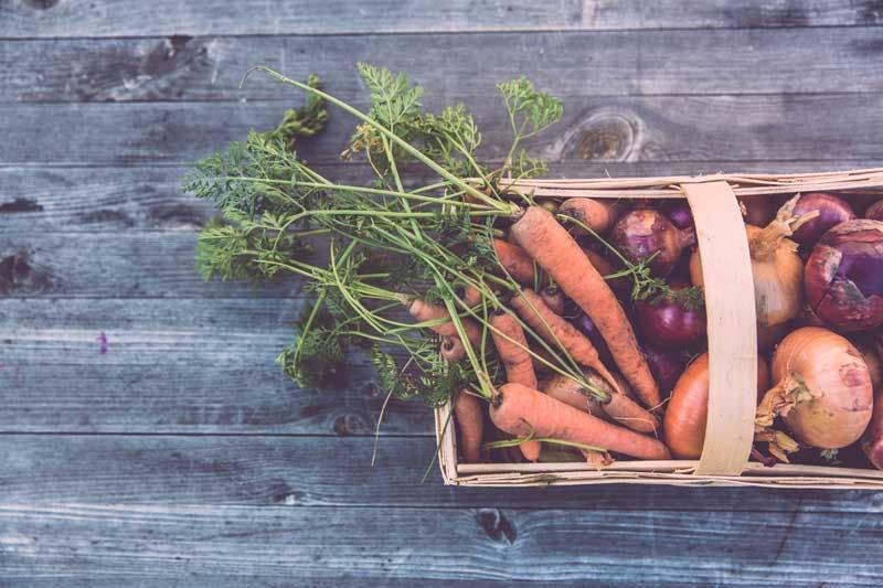 Frisches Gemüse gehört zu einer ausgewogenen Ernährung dazu - Unterstützung bietet auch die Orthomolekulare Medizin