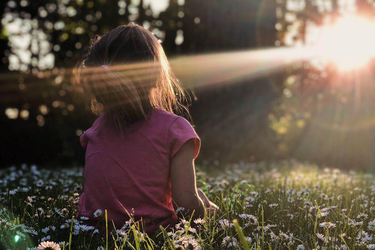 Das Sonnenvitamin D hat im Körper zahlreiche Funktionen