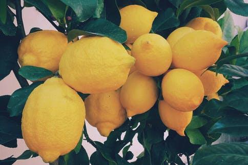 Das Aroma von Zitronen wirkt stimmungsaufhellend