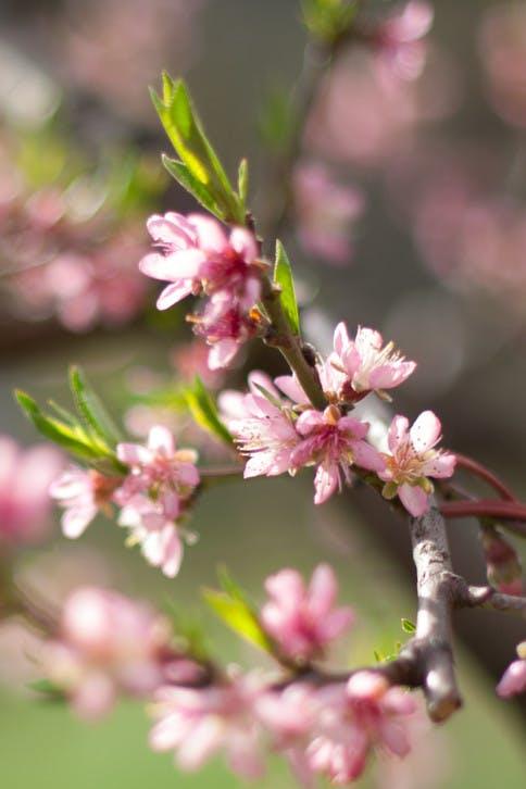 Munter ins Frühjahr