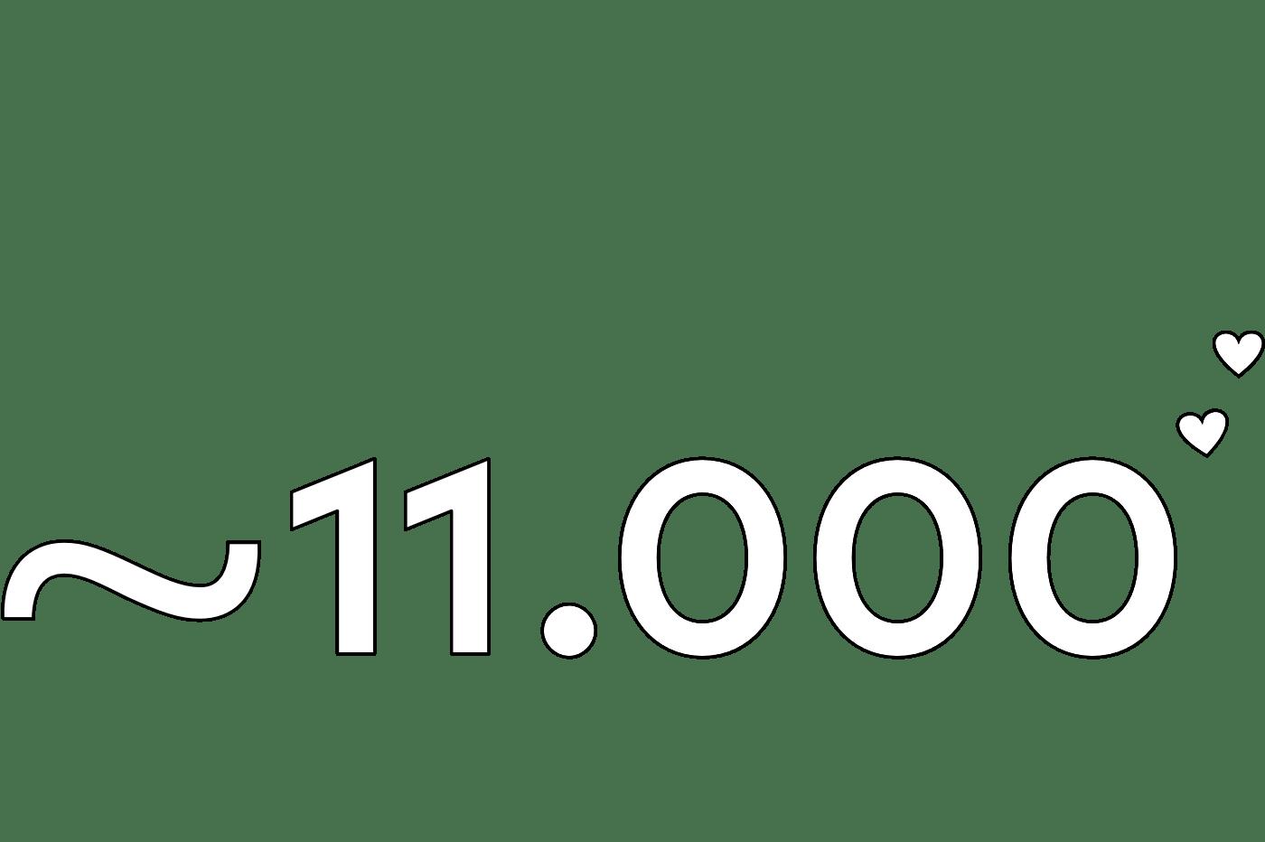 11.000 Teilnehmer