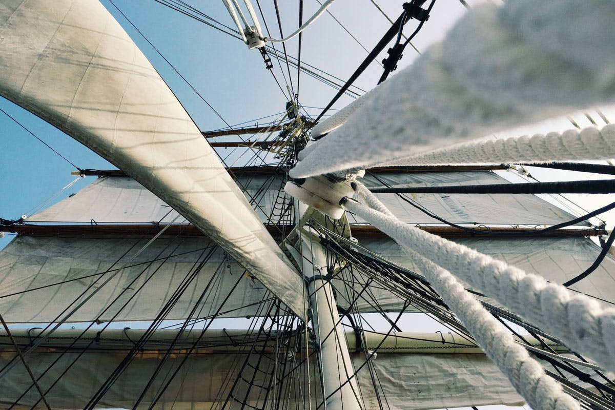 Viele Seefahrer litten früher an Skorbut.