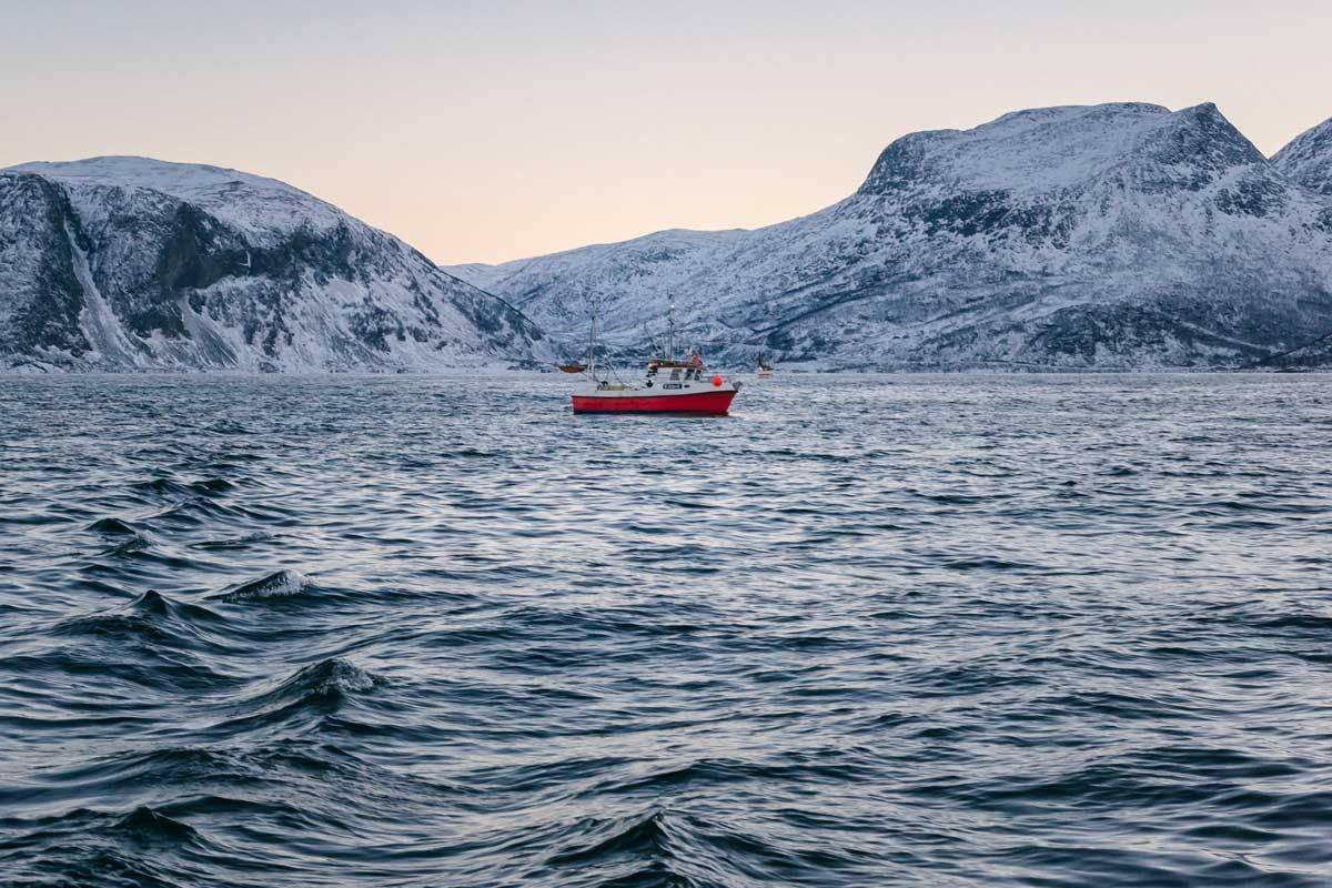 boat_by-marcelo-quinan_eine-dosis-omega-3-fettsaeuren-gefaellig