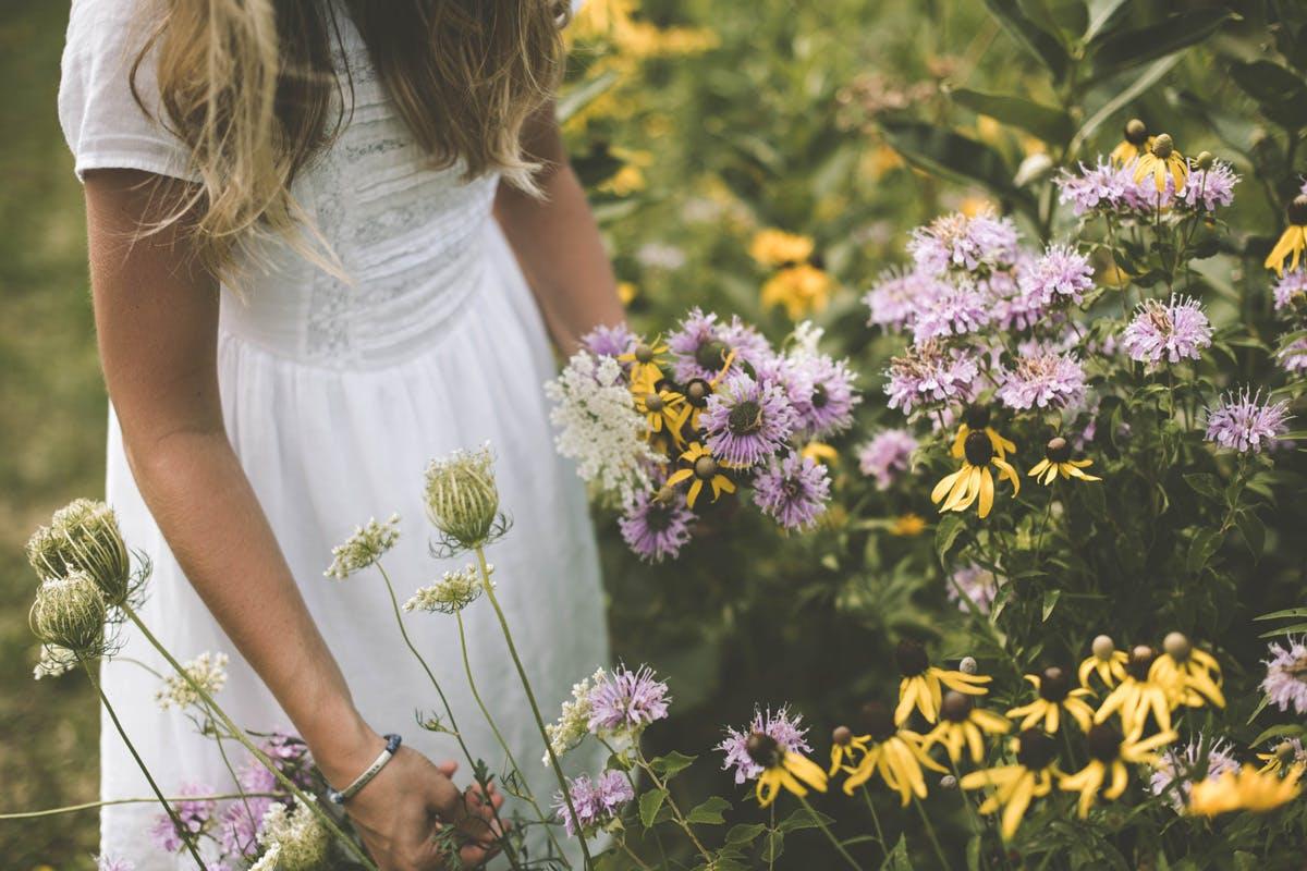 Darmflora blüht- Mädchen pflügt Blumen