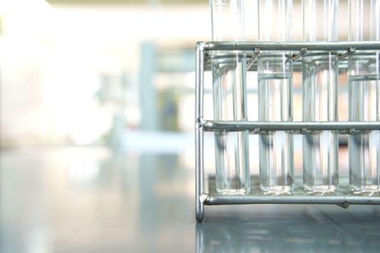 Mikronährstoff-Status bestimmen