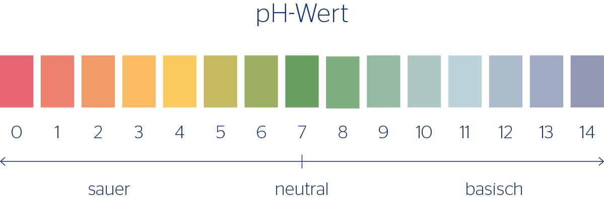 Säure-Basen-Haushalt: pH-Wert-Skala von sauer über neutral bis basisch
